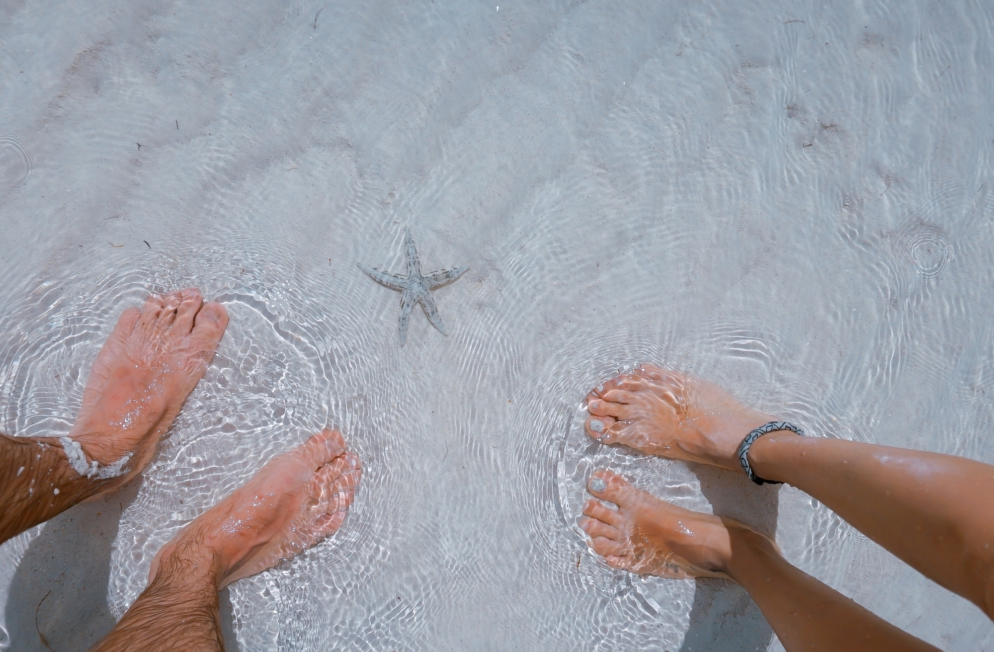 feet on beach with starfish